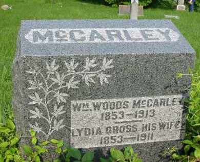 MCCARLEY, WILLIAM WOODS - Gallia County, Ohio | WILLIAM WOODS MCCARLEY - Ohio Gravestone Photos