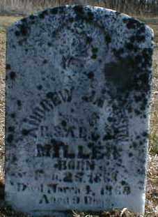 MILLER, ANDREW - Gallia County, Ohio | ANDREW MILLER - Ohio Gravestone Photos