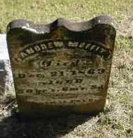 MOFFIT, ANDREW - Gallia County, Ohio | ANDREW MOFFIT - Ohio Gravestone Photos