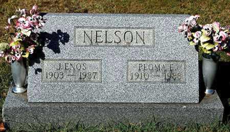 NELSON, ENOS - Gallia County, Ohio | ENOS NELSON - Ohio Gravestone Photos