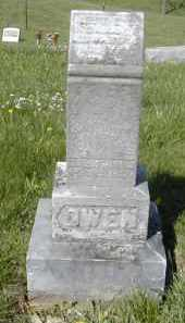 OWEN, NETTIE L. - Gallia County, Ohio | NETTIE L. OWEN - Ohio Gravestone Photos