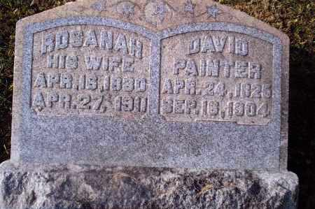 PAINTER, DAVID - Gallia County, Ohio | DAVID PAINTER - Ohio Gravestone Photos
