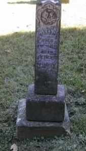 PINNEY, NILES - Gallia County, Ohio | NILES PINNEY - Ohio Gravestone Photos
