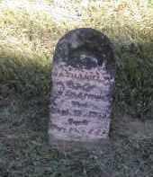 PINNEY, NATHANIEL - Gallia County, Ohio | NATHANIEL PINNEY - Ohio Gravestone Photos