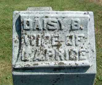 PRICE, DAISY B. - Gallia County, Ohio   DAISY B. PRICE - Ohio Gravestone Photos