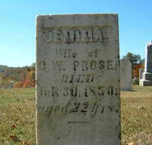 PROSE, JEMIMA - Gallia County, Ohio | JEMIMA PROSE - Ohio Gravestone Photos