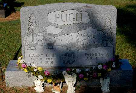 PUGH, HARRY L II - Gallia County, Ohio | HARRY L II PUGH - Ohio Gravestone Photos