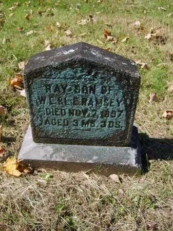 RAMSEY, RAY - Gallia County, Ohio | RAY RAMSEY - Ohio Gravestone Photos