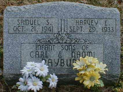 RAYBURN, HARVEY - Gallia County, Ohio | HARVEY RAYBURN - Ohio Gravestone Photos