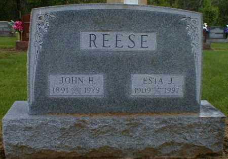 REESE, ESTA - Gallia County, Ohio | ESTA REESE - Ohio Gravestone Photos