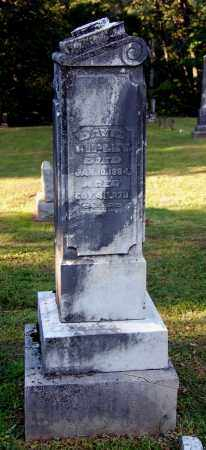 RIPLEY, DAVID - Gallia County, Ohio | DAVID RIPLEY - Ohio Gravestone Photos