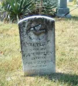 RIPLEY, WALTER - Gallia County, Ohio | WALTER RIPLEY - Ohio Gravestone Photos