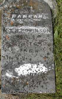 ROBINSON, HANNAH - Gallia County, Ohio | HANNAH ROBINSON - Ohio Gravestone Photos