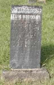 ROBINSON, T.L.M. - Gallia County, Ohio | T.L.M. ROBINSON - Ohio Gravestone Photos