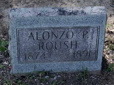 ROUSH, ALONZO P - Gallia County, Ohio | ALONZO P ROUSH - Ohio Gravestone Photos