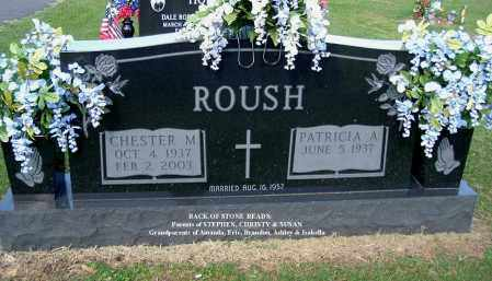 ROUSH, PATRICIA A - Gallia County, Ohio | PATRICIA A ROUSH - Ohio Gravestone Photos
