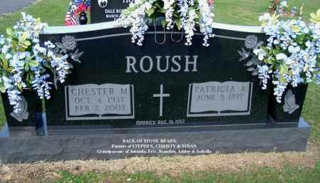 ROUSH, CHESTER M - Gallia County, Ohio | CHESTER M ROUSH - Ohio Gravestone Photos