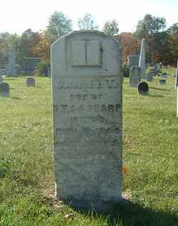 SHARP, DANIEL T - Gallia County, Ohio | DANIEL T SHARP - Ohio Gravestone Photos