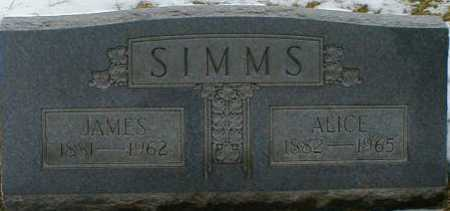 SIMMS, ALICE - Gallia County, Ohio | ALICE SIMMS - Ohio Gravestone Photos