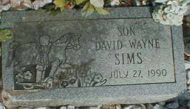 SIMS, DAVID - Gallia County, Ohio | DAVID SIMS - Ohio Gravestone Photos