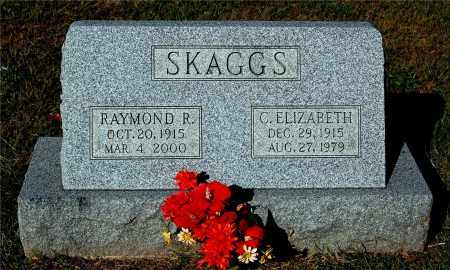 SKAGGS, RAYMOND R - Gallia County, Ohio | RAYMOND R SKAGGS - Ohio Gravestone Photos