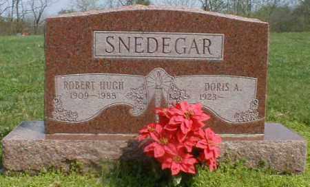 SNEDEGAR, ROBERT - Gallia County, Ohio | ROBERT SNEDEGAR - Ohio Gravestone Photos
