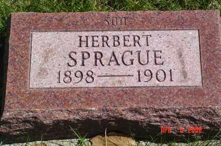 SPRAGUE, HERBERT - Gallia County, Ohio | HERBERT SPRAGUE - Ohio Gravestone Photos