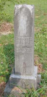 SPROUSE, THOMAS E. - Gallia County, Ohio | THOMAS E. SPROUSE - Ohio Gravestone Photos