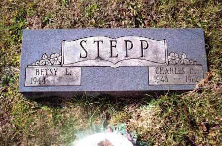 STEPP, CHARLES D. - Gallia County, Ohio | CHARLES D. STEPP - Ohio Gravestone Photos