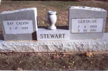 STEWART, RAY CALVIN - Gallia County, Ohio | RAY CALVIN STEWART - Ohio Gravestone Photos