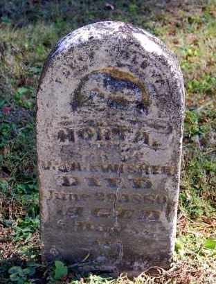 SWISHER, HORTA - Gallia County, Ohio | HORTA SWISHER - Ohio Gravestone Photos