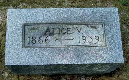 SWITZER, ALICE V - Gallia County, Ohio | ALICE V SWITZER - Ohio Gravestone Photos
