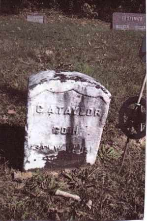 TAYLOR, C.A, - Gallia County, Ohio | C.A, TAYLOR - Ohio Gravestone Photos