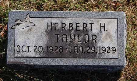 TAYLOR, HERBERT H - Gallia County, Ohio | HERBERT H TAYLOR - Ohio Gravestone Photos