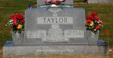 TAYLOR, TONY A - Gallia County, Ohio | TONY A TAYLOR - Ohio Gravestone Photos