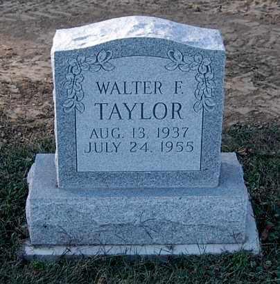 TAYLOR, WALTER F - Gallia County, Ohio | WALTER F TAYLOR - Ohio Gravestone Photos