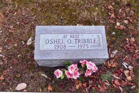 TRIBBLE, OSHEL O. - Gallia County, Ohio | OSHEL O. TRIBBLE - Ohio Gravestone Photos