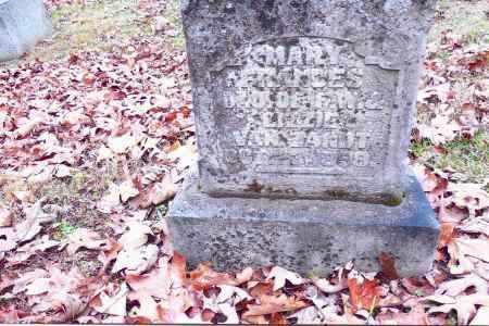 VANZANT, MARY FRANCES - Gallia County, Ohio | MARY FRANCES VANZANT - Ohio Gravestone Photos