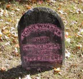 VARIAN, LEMUEL - Gallia County, Ohio | LEMUEL VARIAN - Ohio Gravestone Photos
