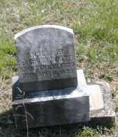 WALTER, ANSEL - Gallia County, Ohio | ANSEL WALTER - Ohio Gravestone Photos