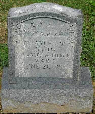WARD, CHARLES - Gallia County, Ohio | CHARLES WARD - Ohio Gravestone Photos