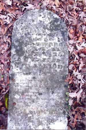 WARD, JAMES M. - Gallia County, Ohio   JAMES M. WARD - Ohio Gravestone Photos