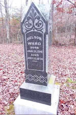 WARD, NELSON - Gallia County, Ohio | NELSON WARD - Ohio Gravestone Photos