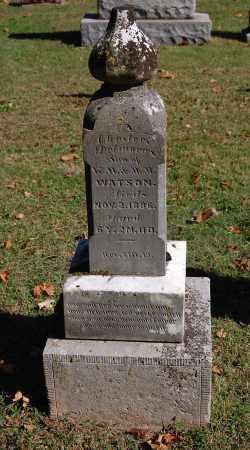 WATSON, CHESTER DELMORE - Gallia County, Ohio | CHESTER DELMORE WATSON - Ohio Gravestone Photos