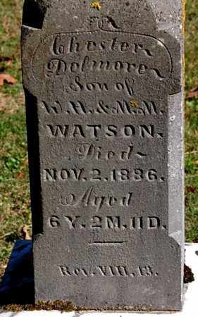 WATSON, CHESTER DELMORE (CLOSE-UP) - Gallia County, Ohio | CHESTER DELMORE (CLOSE-UP) WATSON - Ohio Gravestone Photos