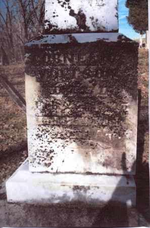 WATSON, CORNELIUS - Gallia County, Ohio | CORNELIUS WATSON - Ohio Gravestone Photos