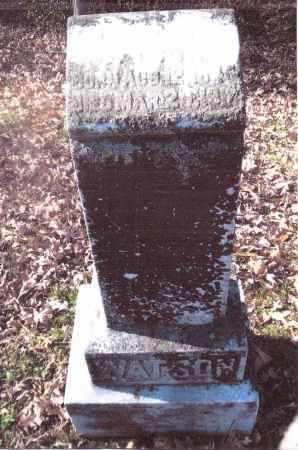 WATSON, JAMES - Gallia County, Ohio | JAMES WATSON - Ohio Gravestone Photos