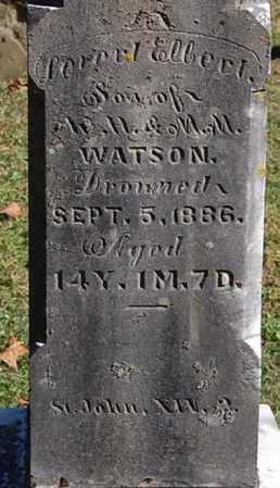 WATSON, LEVERT ELBERT (CLOSE-UP) - Gallia County, Ohio | LEVERT ELBERT (CLOSE-UP) WATSON - Ohio Gravestone Photos
