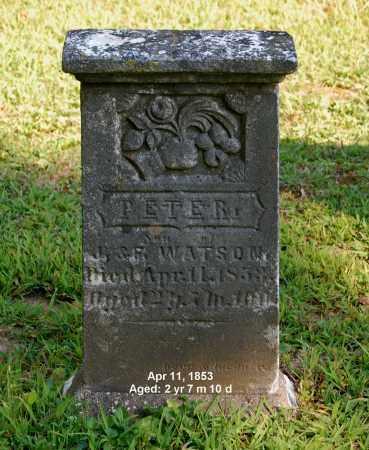 WATSON, PETER - Gallia County, Ohio | PETER WATSON - Ohio Gravestone Photos