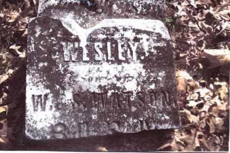 WATSON, WESLEY - Gallia County, Ohio | WESLEY WATSON - Ohio Gravestone Photos